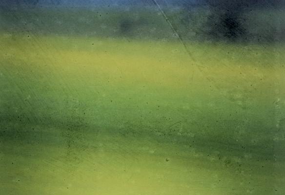 sortie de terrain vert2